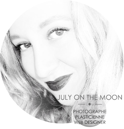JULY ON THE MOON